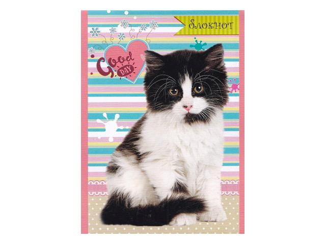 Блокнот А6 Prof Press на скобе м/обложка 24л Хорошие котята Б24-3267