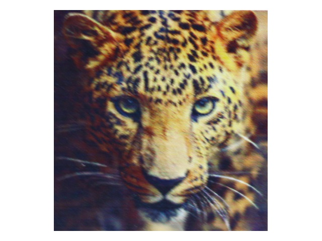 Алмазная мозаика без подрамника 30*30см Mazari Взгляд леопарда M-10504