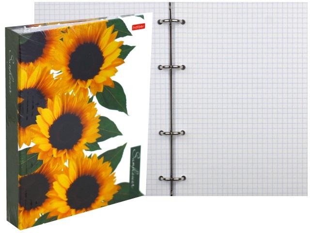 Тетрадь А5 на кольцах 160л Hatber Sunflowers 160ТК5В1_23016