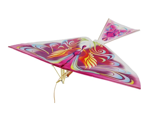Запускная игрушка Птица сборная BRD2679-60