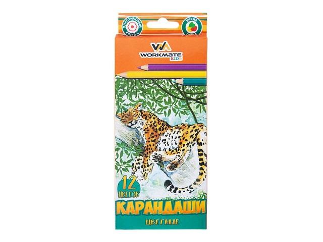 Карандаши цветные 12цв WM пластик шестигранные 171120500