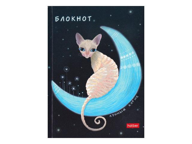 Записная книжка А6 Hatber тв/переплёт  80л Лунный кот 80ББ6В1_23809\36