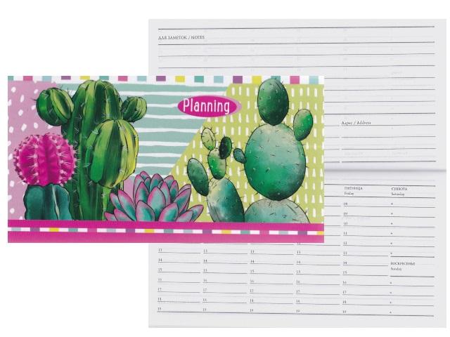Планинг мини интегр/обл 64л Prof Press Кактусы в цвету 64-1307