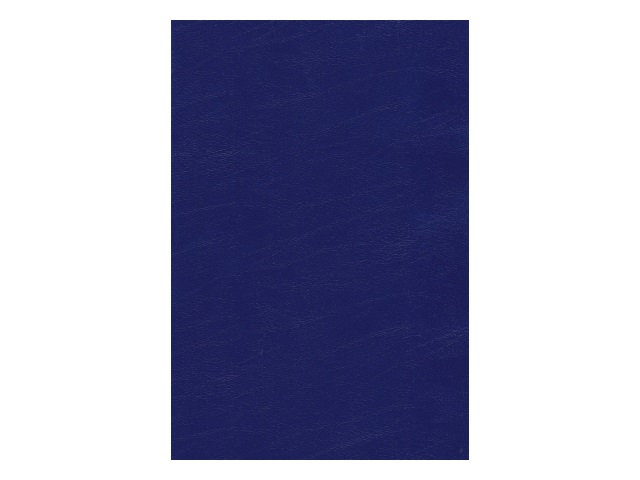 Тетрадь А4  96л Hatber линия бумвинил Синяя 96Т4бвC4