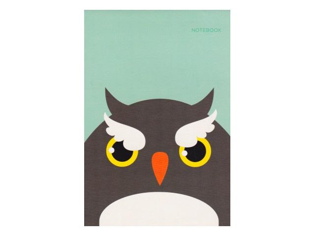 Блокнот А6 Канц-Эксмо клееный м/обложка 40л Сова БСК64010