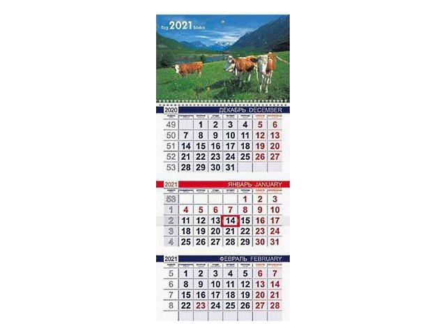 Календарь квартальный 2021 3-х блочный Hatber Знак года 3Кв1гр3_23489