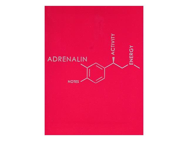 Блокнот А6 Канц-Эксмо интегр/обл 80л линия Molecule Adrenalin БИФ68082