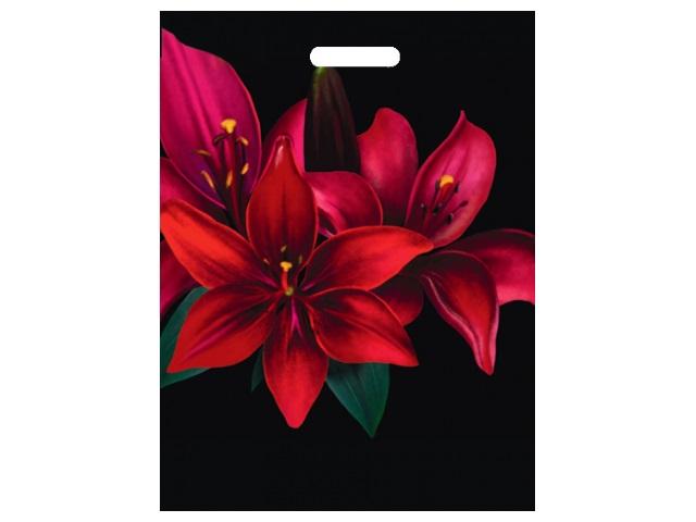 Пакет с прорезной ручкой 36.5*48см Цветы ППК-4599