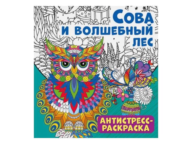 Раскраска-антистресс NDPlay Сова и волшебный лес 286084