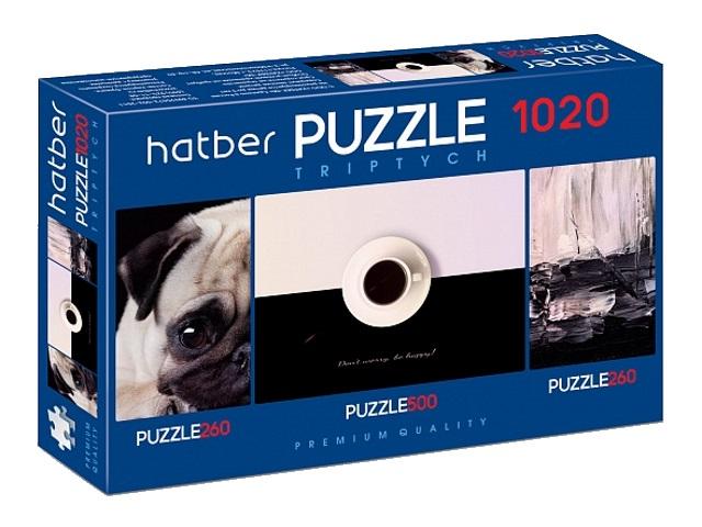 Пазлы комплект 3 в 1 Hatber Эклектика 1020ПЗ2_20931