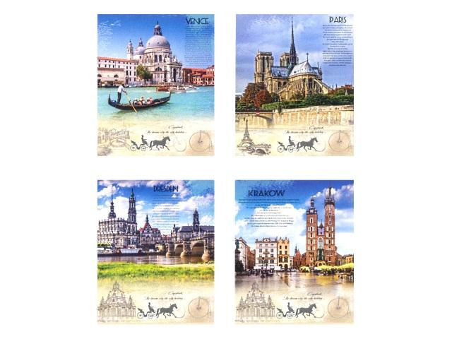 Тетрадь в клетку 96 листов Красивые города, Prof Press 96-2349