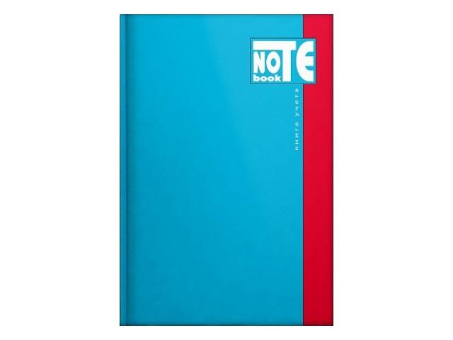 Книга канцелярская А4, 196 листов, твердая обложка, Классическая, Prof Press