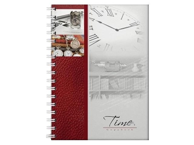 Книга канцелярская А4, 120 листов, спираль сбоку, твердая обложка, Время-Деньги, Prof Press