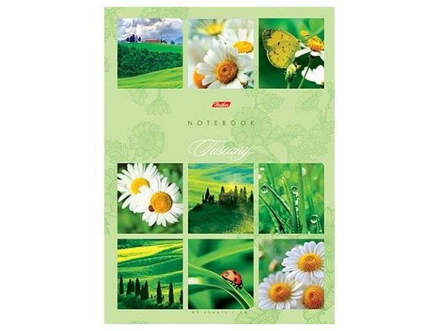 Книга канцелярская А4, 80 листов, твердая обложка, Ромашковое настроение, Hatber