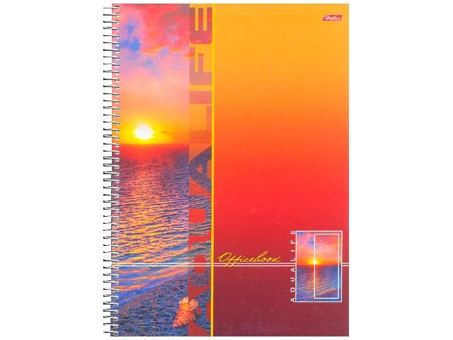 Книга канцелярская А4, 160 листов, спираль сбоку, твердая обложка, с перфорацией, Аквалайф, Hatber