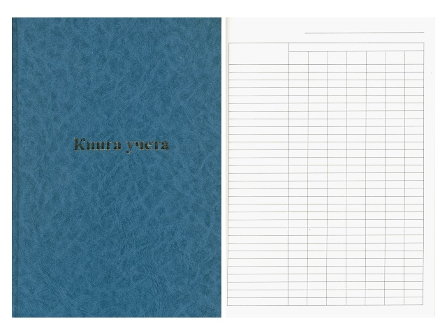 Книга учета А4 96 листов в линию твердая обложка пустографка, Ульяновский Дом Печати КУ-523