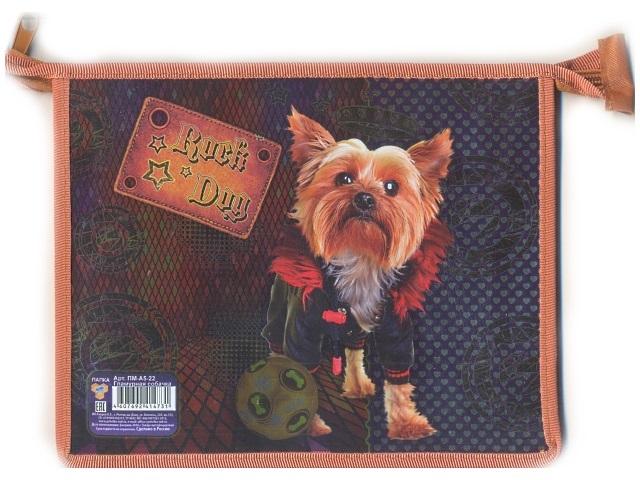 Папка для тетрадей на молнии, А5, пластиковая, фольгированный картон, Гламурная собачка, Пчелка