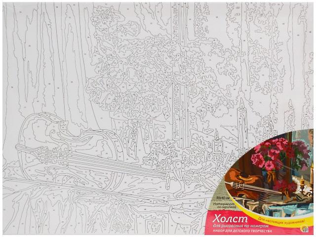 Картина по номерам, холст на подрамнике 30*40 см, в наборе кисти и акриловые краски, Натюрморт со скрипкой, Рыжий кот
