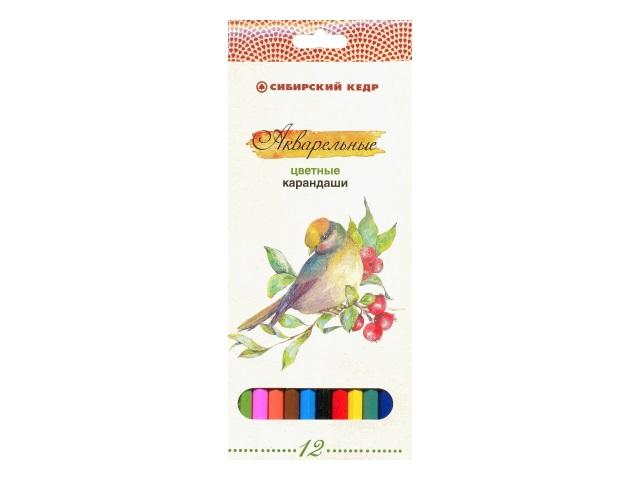Карандаши цветные 12 цветов Птицы Сибири, шестигранные акварельные, Сибирский кедр СК083-12