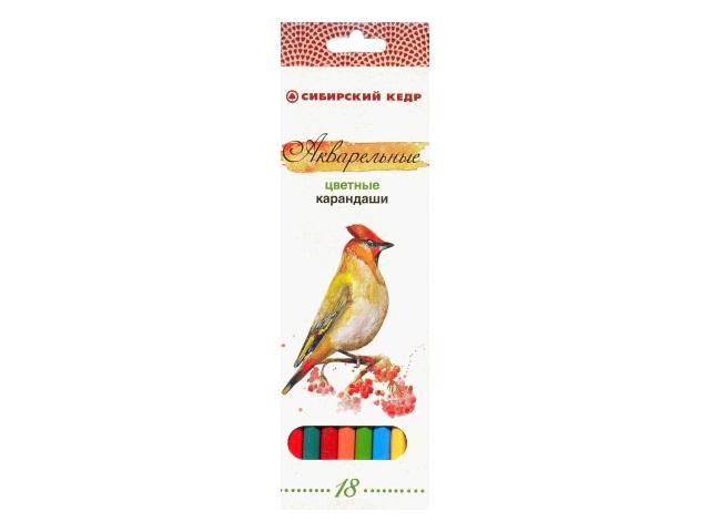 Карандаши цветные 18 цветов Птицы Сибири, шестигранные акварельные, Сибирский кедр СК083-18