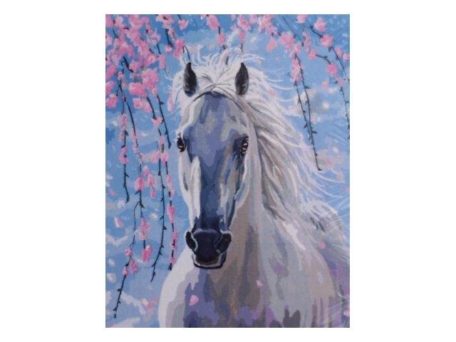Картина по номерам, холст на подрамнике 40*50 см, в наборе кисти и акриловые краски, Белая лошадь, Schreiber
