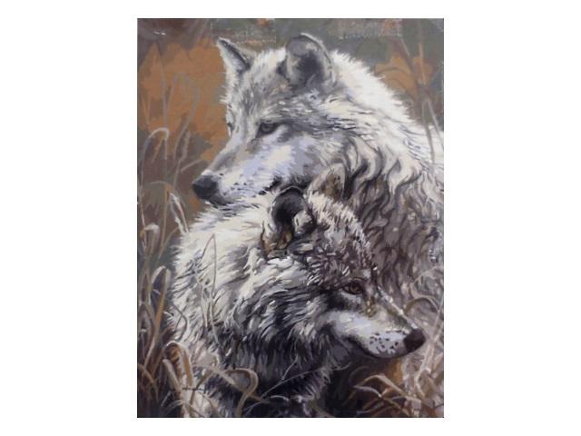 Картина по номерам, холст на подрамнике 40*50 см, в наборе кисти и акриловые краски, Волки, Schreiber