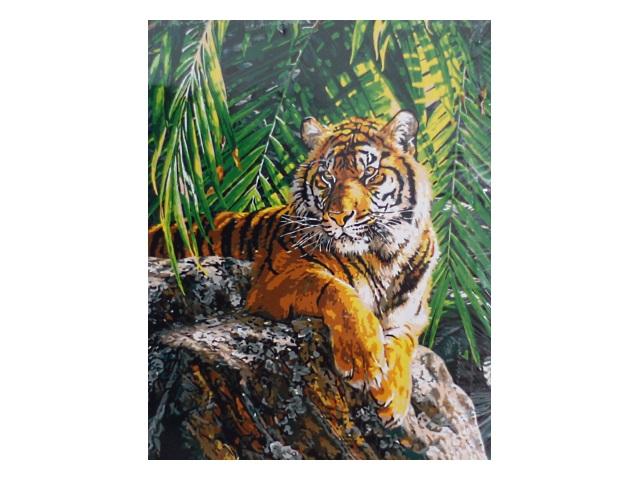 Картина по номерам, холст на подрамнике 40*50 см, в наборе кисти и акриловые краски, Тигрица, Schreiber
