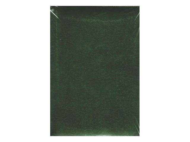 Ежедневник не датированный А5 320 листов кожзам Visa темнозеленый, Attomex 2034627