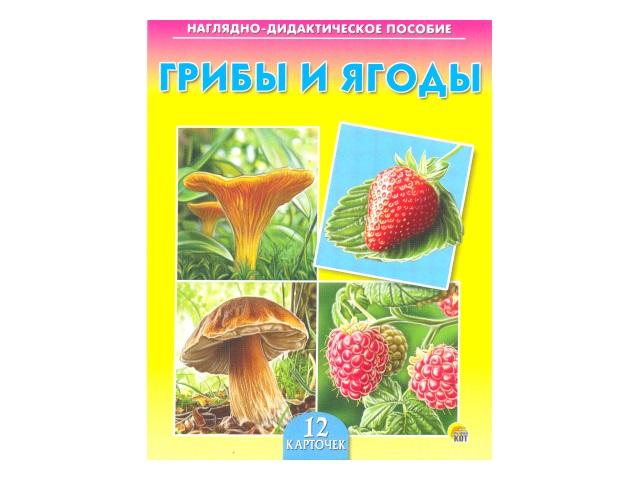 Обучающие карточки А5 Грибы и ягоды, Рыжий кот ПД-7215