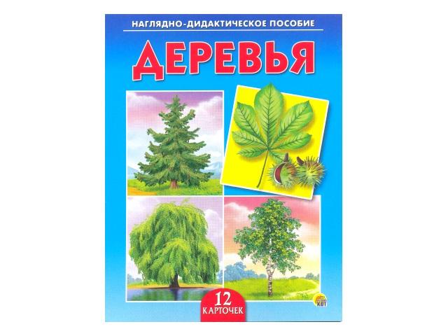 Обучающие карточки А5 Деревья, Рыжий кот ПД-6875
