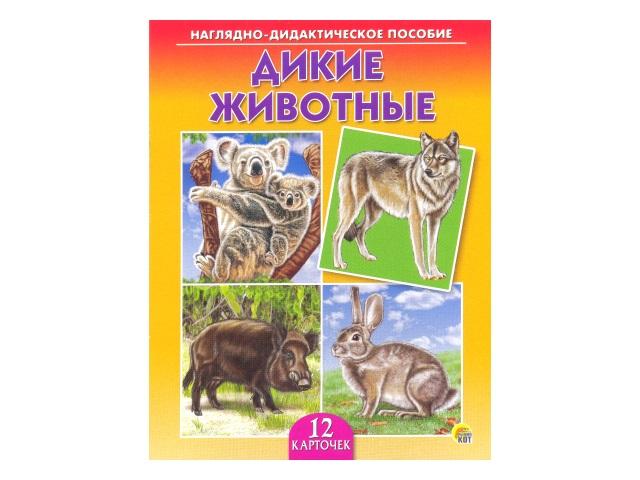 Обучающие карточки А5 Дикие животные, Рыжий кот ПД-7216