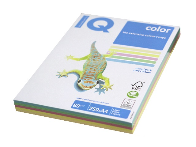 Бумага А4, 80 г/м, 5 цветов по 50 листов, пастельная, IQ