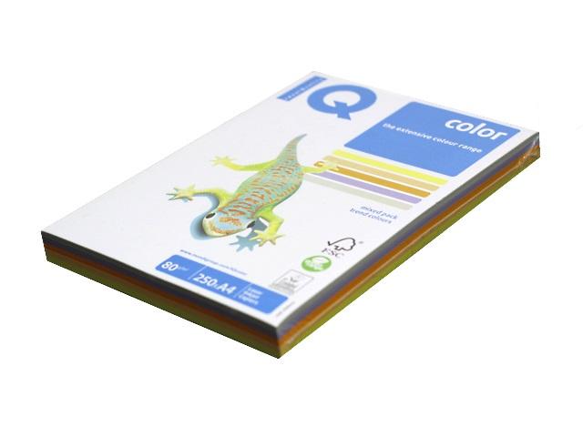 Бумага А4, 80 г/м, 5 цветов по 50 листов, тренд, IQ
